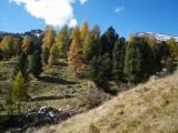 Vorschau Herbst