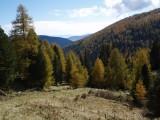 Vorschau Blick ins Tal